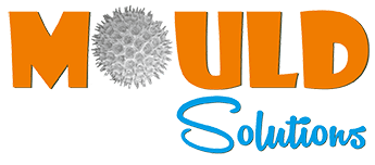 Mould-Solutions-Logo-small-for-web